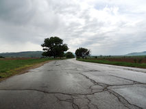 Wet Empty Road in Gloomy Day. Wet empty asphalt road with cracks. Low angle shot. Cloudy sky above plain fields. Rain has just stopped Stock Photography