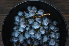 Wet fall grape or mountain grapes in black porcelain bowl Stock Images