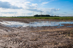 Wet farmland in the Netherlands Stock Photos