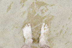 Wet feet on the beach Royalty Free Stock Image