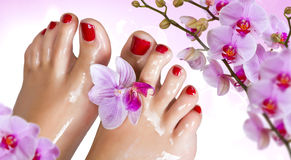 Wet feet with the orchid. Royalty Free Stock Photography