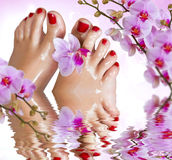 Wet feet with orchid above the water. Royalty Free Stock Photos