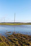 Wet field. Royalty Free Stock Photos