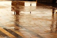 Wet floor closeup Royalty Free Stock Image