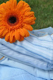 Wet Flower on Blue Baby Clothes Royalty Free Stock Photos