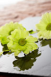 Wet flowers on a stone tile. Wet flowers inside a spa on a stone tile Royalty Free Stock Images