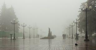 Wet foggy park Royalty Free Stock Image