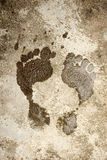 Wet foot print Stock Image