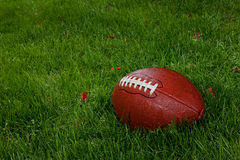 Wet football on the grass Royalty Free Stock Photos