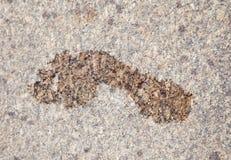 Wet footprint on granite Royalty Free Stock Image