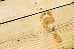 Wet Footprint on Wood Deck Stock Image