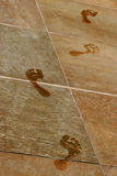 Wet Footprints. A series of wet footprints cross a tile floor Royalty Free Stock Photos