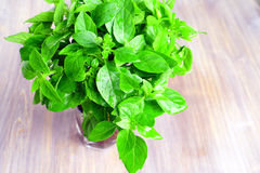 Wet fresh basil in the cone of paper on a wooden table Stock Photography