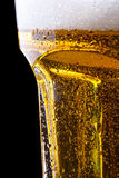 Wet fresh beer Royalty Free Stock Images