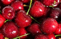 Wet fresh cherry background Royalty Free Stock Photography