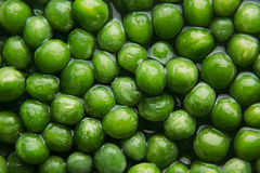 Wet fresh green peas in water closeup as background. Stock Photography
