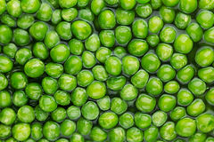 Wet fresh green peas in water closeup as background. Royalty Free Stock Photo