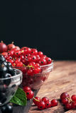 Wet fresh red currants Stock Image