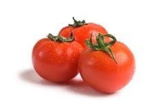 Wet fresh tomato. Isolated on white background Royalty Free Stock Images