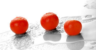 Wet fresh tomatoes. On  backgrounds Royalty Free Stock Photos