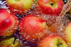 Wet Fruit Royalty Free Stock Photos