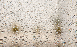 Wet glass with drops of rain Stock Image