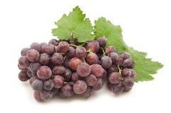 Wet grape Royalty Free Stock Photos
