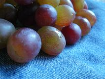 Wet grapes on blue denim stock photos