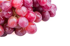 Wet grapes Royalty Free Stock Photos