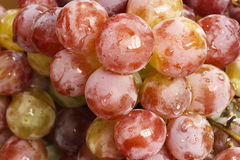 Wet grapes detail Royalty Free Stock Images