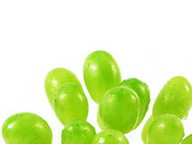 Wet grapes fruits Royalty Free Stock Photo