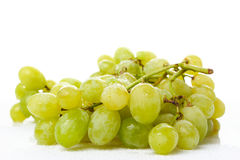Wet Grapes on White Stock Photo