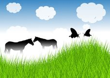 Wet Grass with Horse Stock Photo