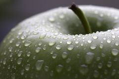 Wet green apple with stem Royalty Free Stock Image