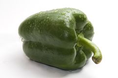 Wet green bell pepper Stock Photos