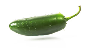 Wet Green jalapeno hot pepper with water drops. On white background Royalty Free Stock Image