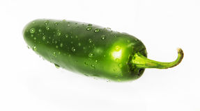 Wet Green jalapeno hot pepper. With water drops on white background Stock Photo