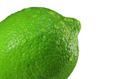 Wet Green Lime Royalty Free Stock Photos