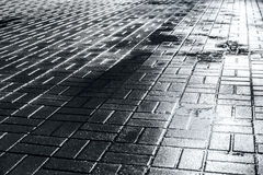 Wet grey pavement after rain Stock Image