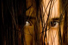 Wet hair. A woman with wet hair Royalty Free Stock Photography