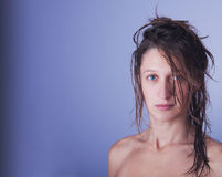 Wet hairs Stock Images