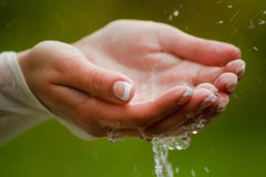Wet hands. Pure water in female hands Stock Photography