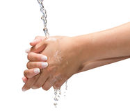 Washing Hands Isolated  Stock Image
