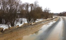 Wet highway during the thaw. Wet highway going through the forest during the thaw royalty free stock photo