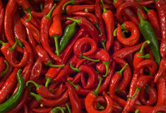 Wet hot pepper. Background. Royalty Free Stock Photos