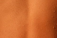 Wet human skin texture. Closeup on wet human skin from the back upper body Royalty Free Stock Image
