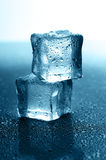 Wet ice cubes Stock Photography