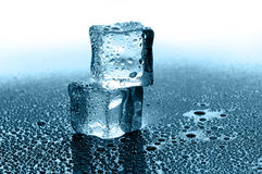 Wet ice cubes Stock Photos