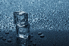 Wet ice cubes. Royalty Free Stock Image
