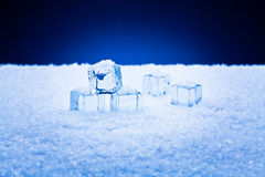 Wet ice cubes and snow Stock Photography